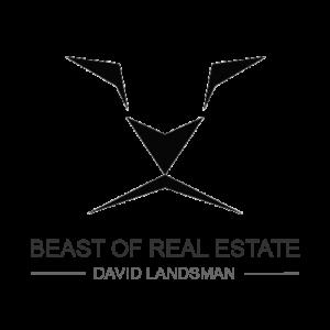 david landsman, beast of real estate, real estate agent, realtor